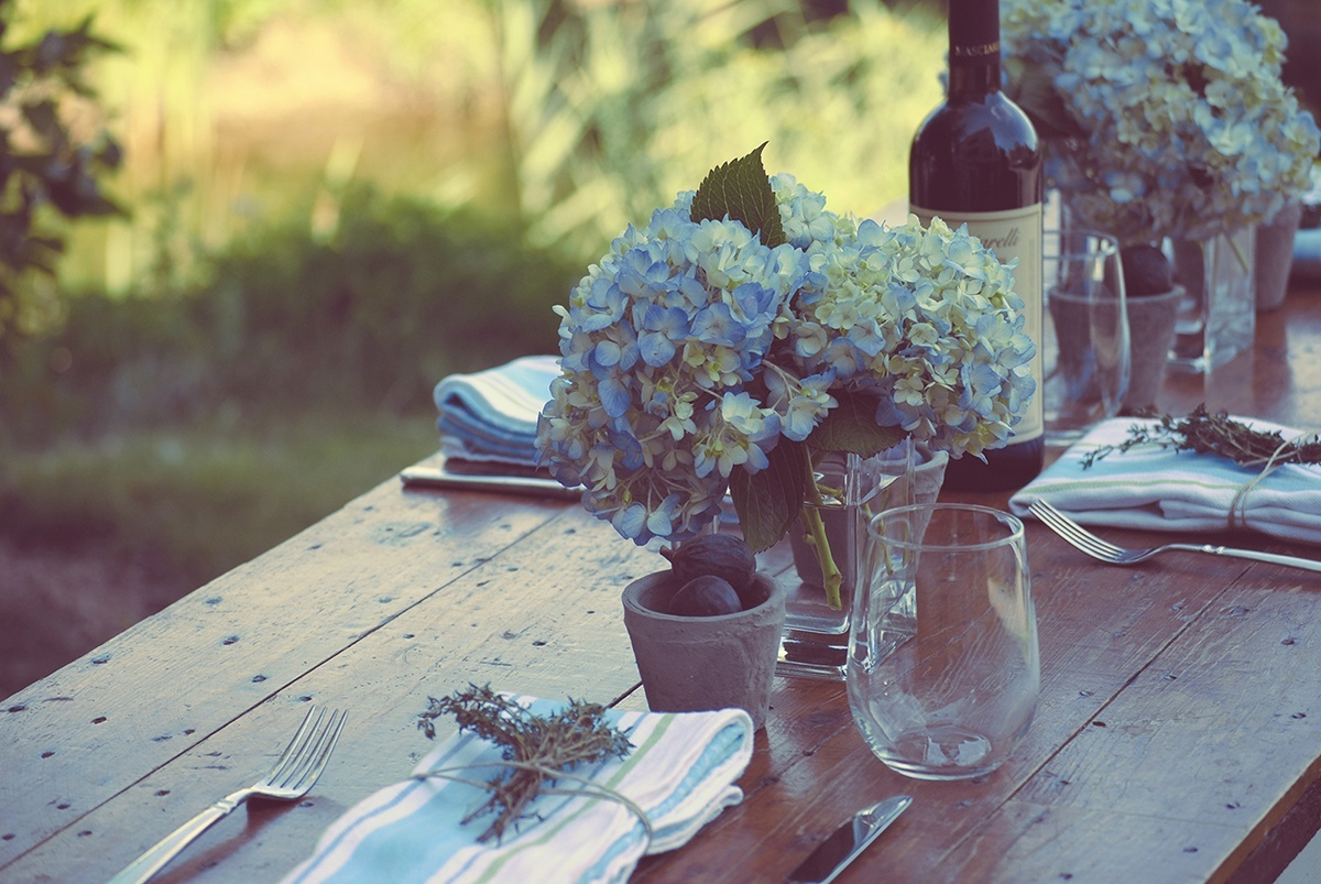 5 Crucial Tips for Disaster-Free Outdoor Dining