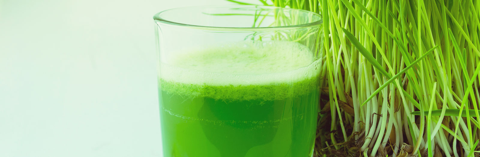 Wacky Trend Wednesday: Chlorophyll Water